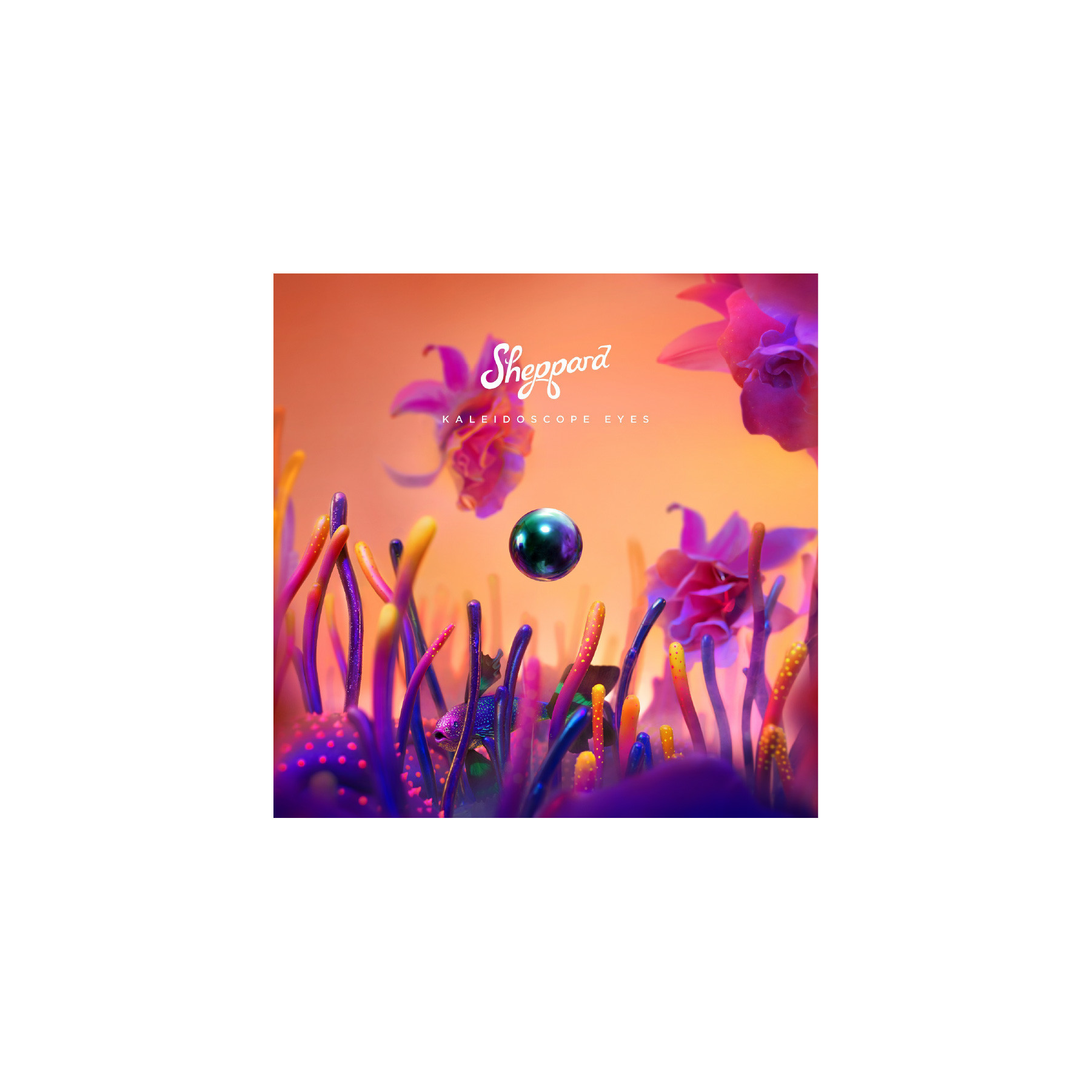 Sheppard - Kaleidoscope Eyes Digital Album